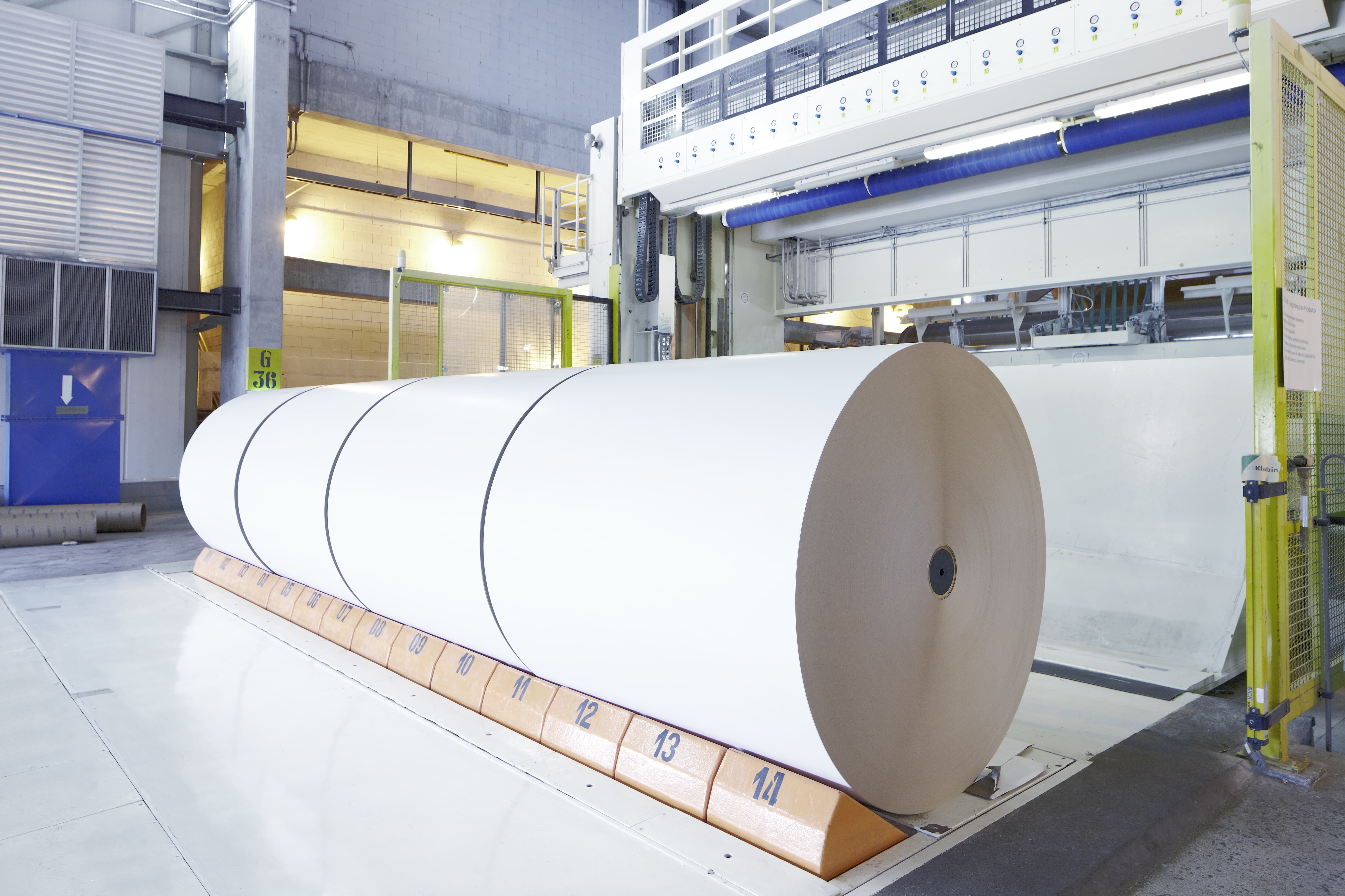Pulp & Paper Industry