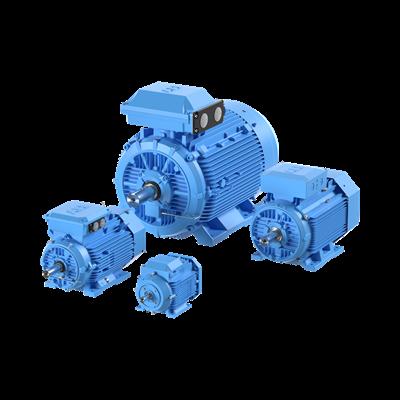 Dammantändningsskyddad modulär lågspänd IE2-motor